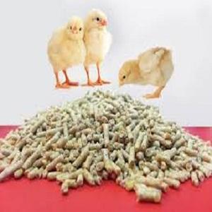 خوراک دام مرغ گوشتی استارتر